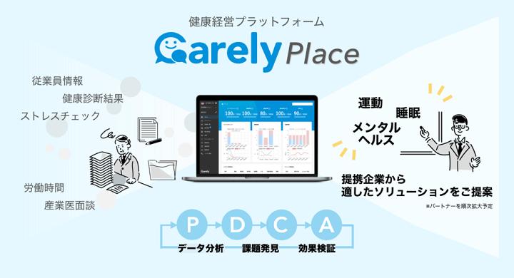 画像:「Carely Place」提案ソリューション詳細(iCARE)